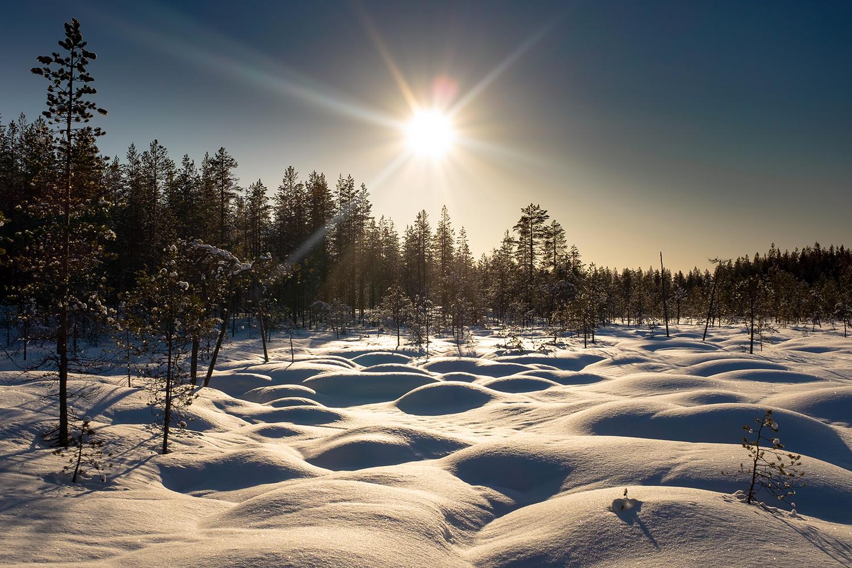 Bog - Hossa Finland