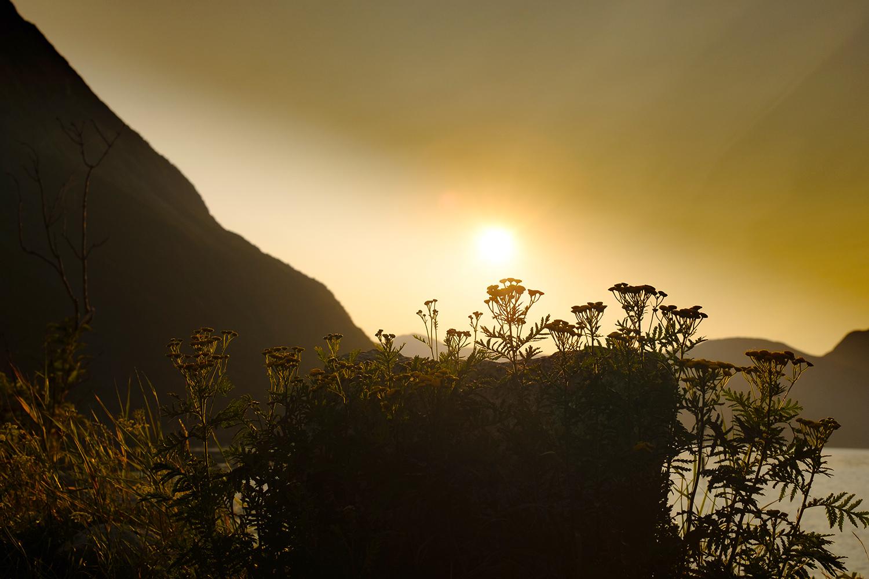Sunlight Eidfjord - Norway
